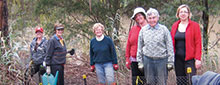 happy landcare people by the yarra river